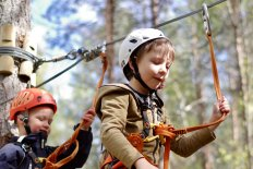 <p><strong>Welcome to an exciting adventure package up in the treetops</strong></p>